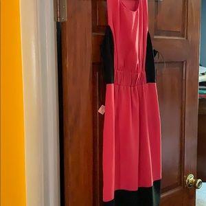 Rachel Roy coral and black dress